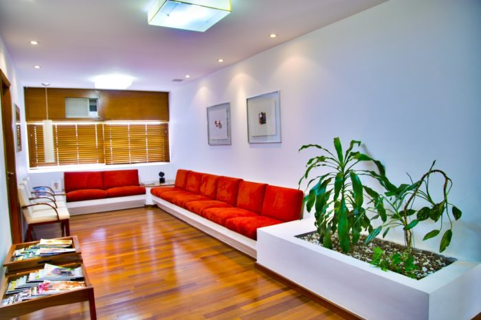 Waiting Room  with wood floors, plants and red post-modern couches